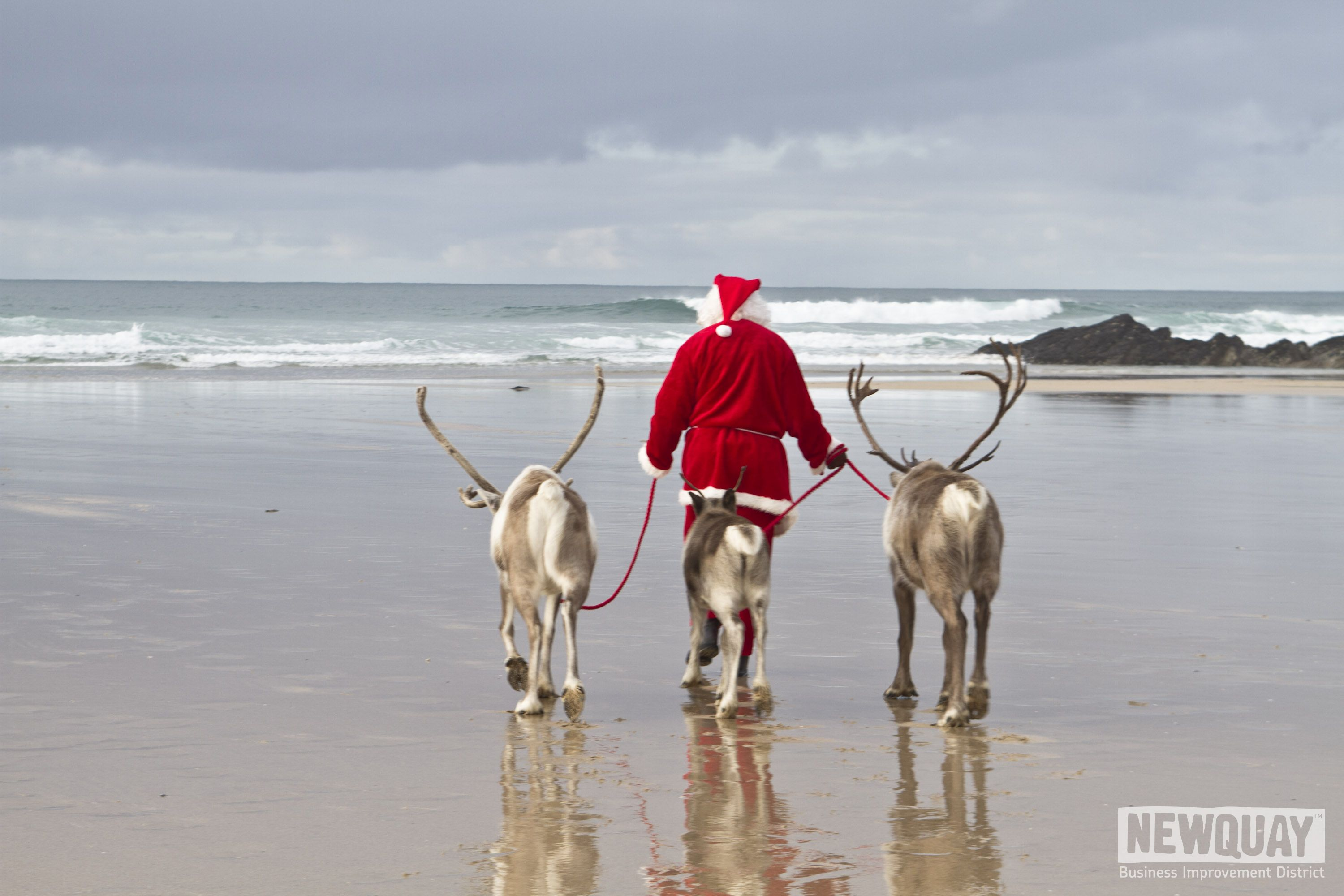 santa and his reindeer having a break in newquay before they start