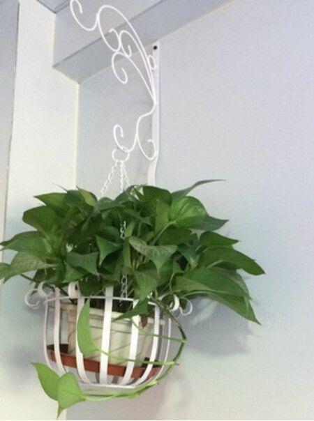White Metal Plant Hanger Flowers Pot Basket Bracket Hook Garden Home OZ