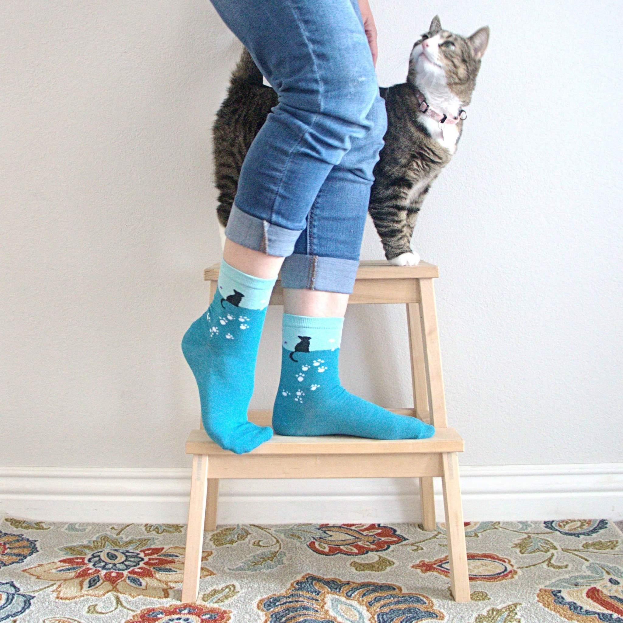Moony Cat Socks (With images) Cat socks, Cute black cats