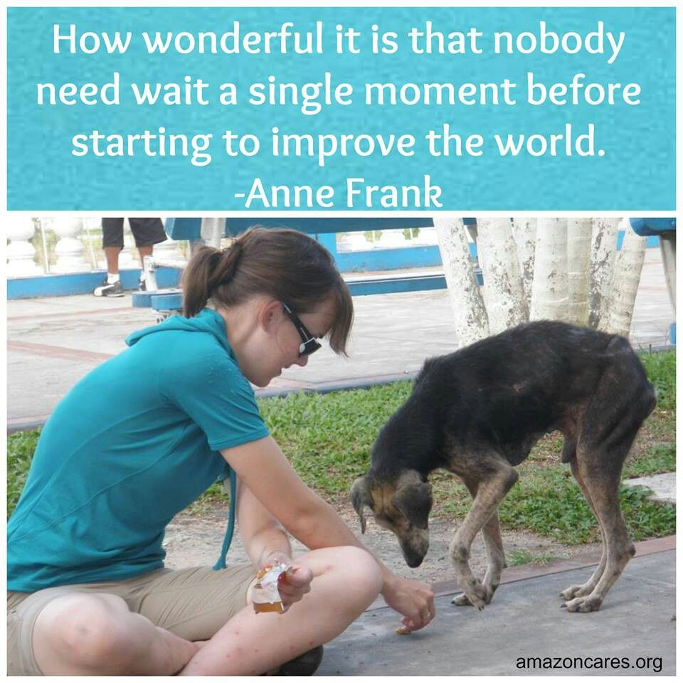 Learn about our Veterinary volunteer trips at www