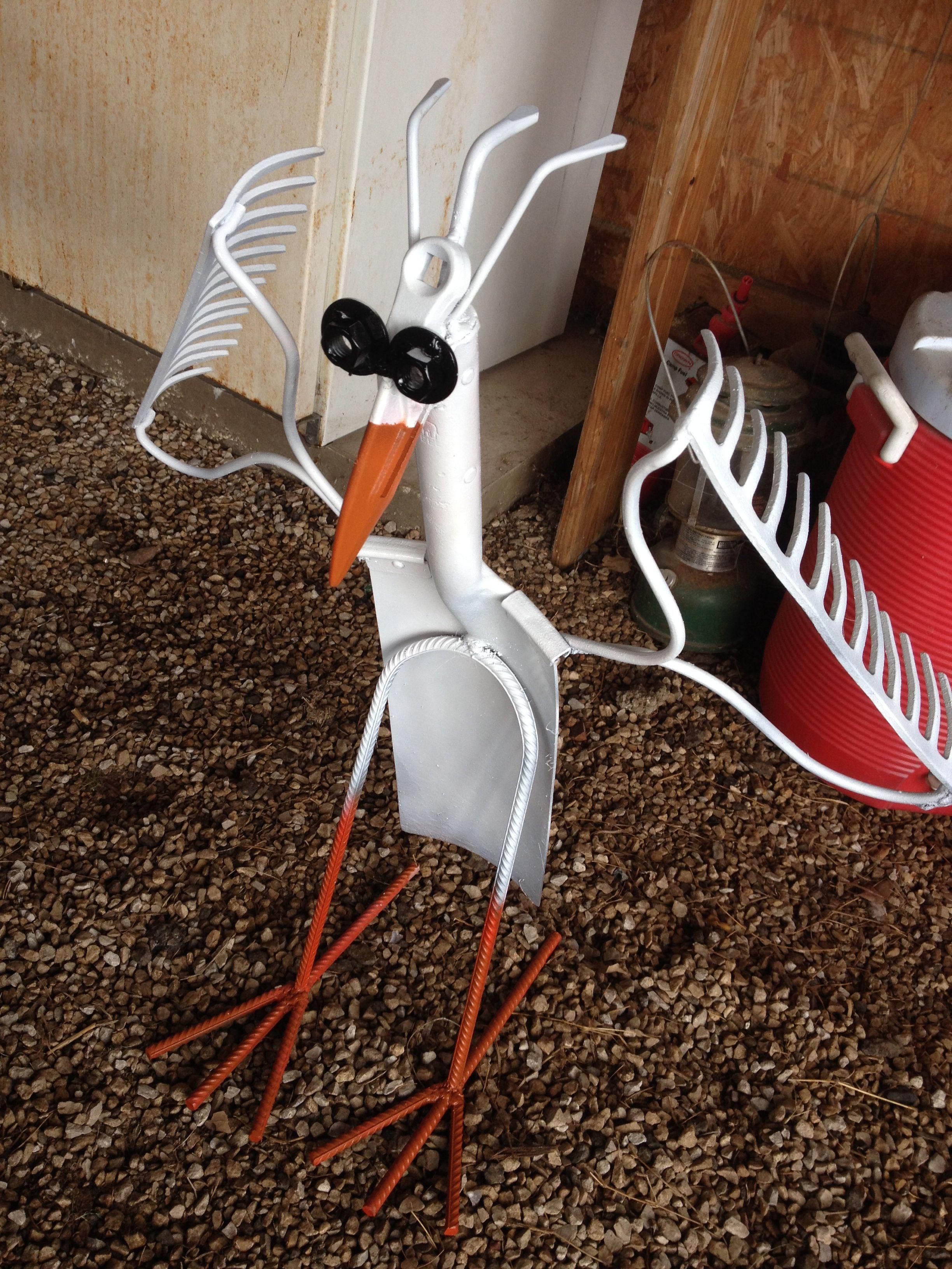 Artic shovel bird