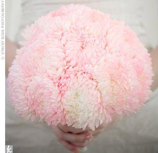 pink, pink, pink mums