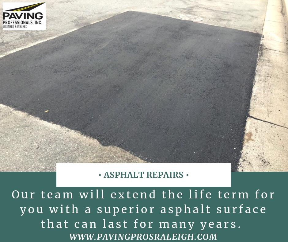 Paving Professionals Inc Offers Asphalt Repair And Sealcoating Solutions Asphalt Repair Clean Concrete Repair