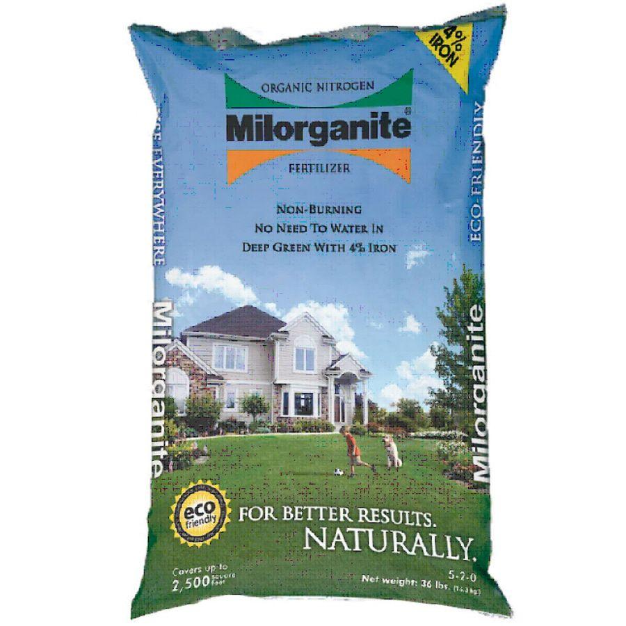 how often to fertilize lawn with milorganite