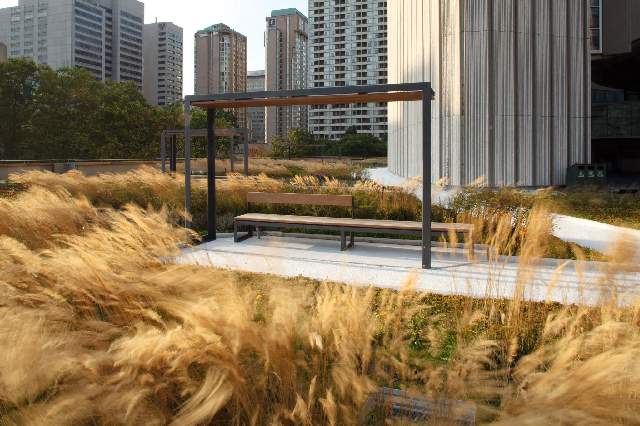 Nathan Phillips Square Podium Roof Garden by PLANT Architect Inc ...