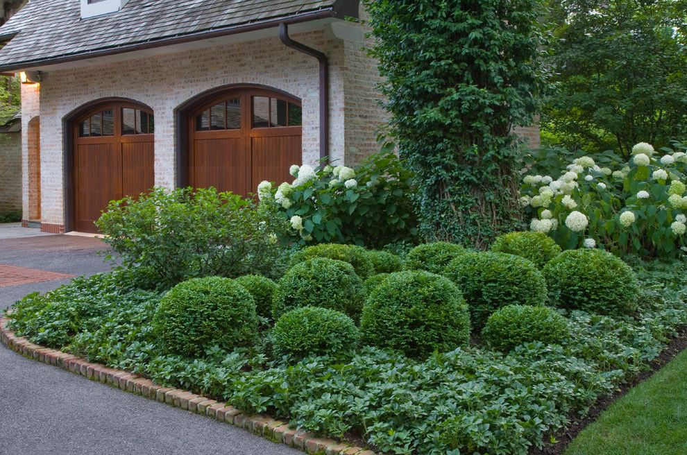 Marvelous Boxwood Topiary mode Chicago Traditional Landscape