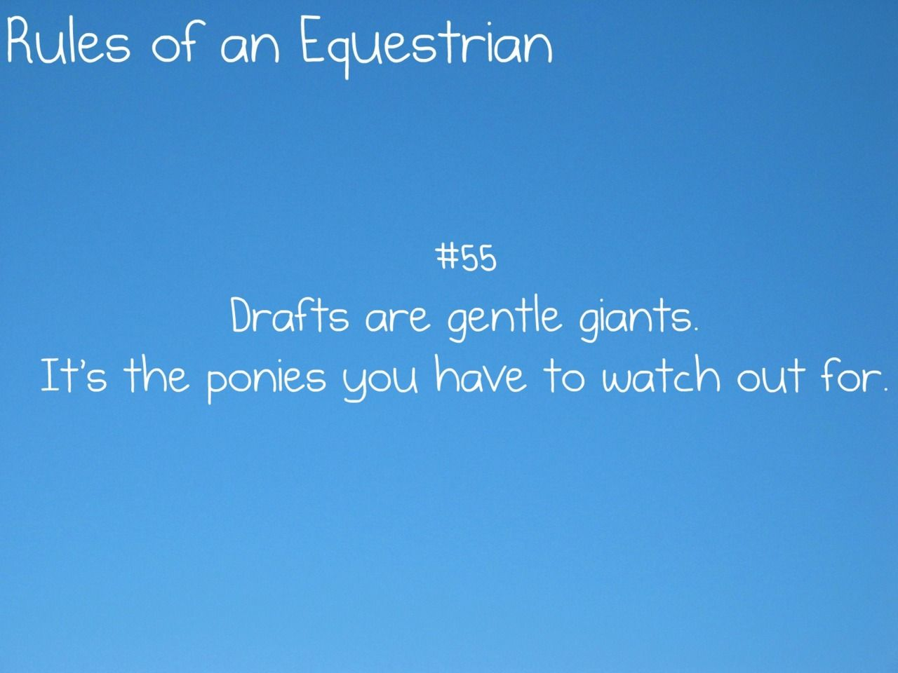 Funny Quotes About Family Issues: Rules Of An Equestrian: