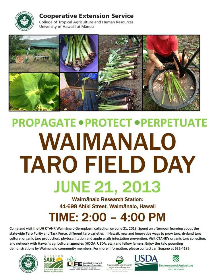 Pin by Tracy Walker on Kaua'i Mom on a Mission Field day