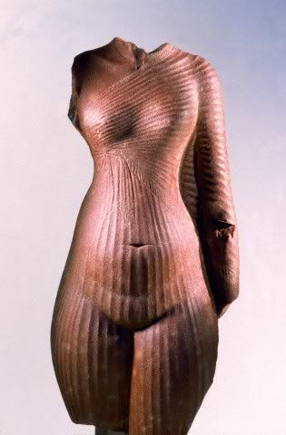 body figure