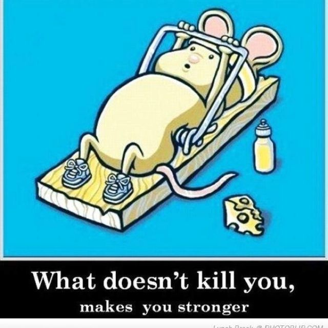 """What doesn't kill you, makes you stronger."""
