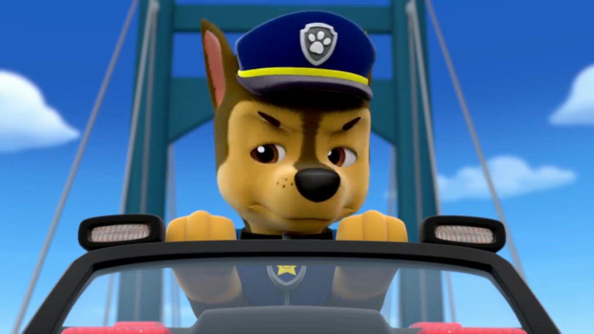 Chase Ti Nebo Paw Patrol Pups Paw Patrol Chase Paw Patrol