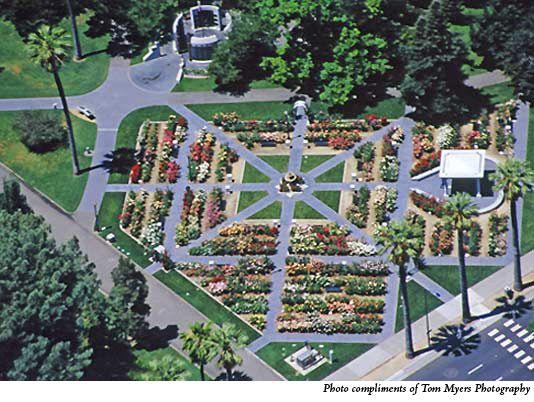 Rose Garden Aerial View Peace Rose Sacramento Parks Sacramento