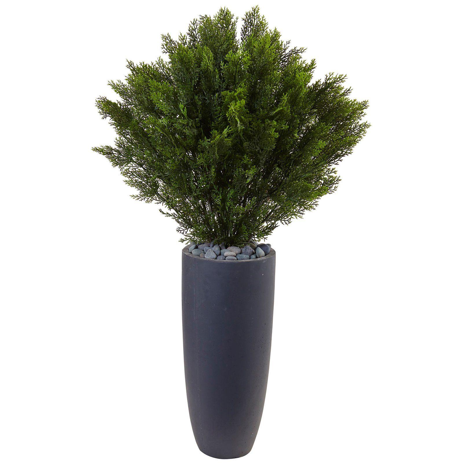 In-door//Out-door Nearly Natural 5160 2/' Cedar Spiral Silk Tree