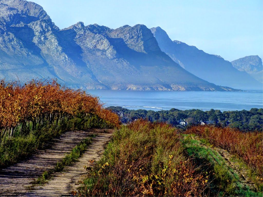 Somerset West, Cape Town,South Africa | South africa ...