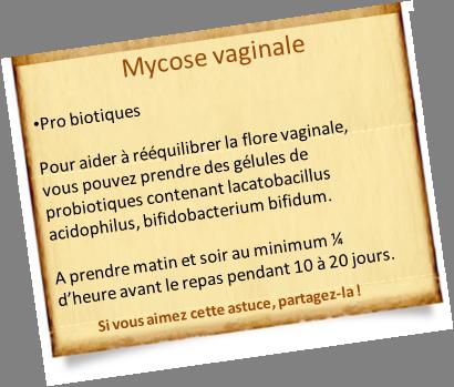 mycose vaginale probiotiques petite astuces pinterest atelier and remedies. Black Bedroom Furniture Sets. Home Design Ideas