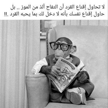 كلام صحيح Br مينفعش فعل ا نحاول نقنع قرد إنه ياكل تفاح وملناش دخل بذوق ال Funny Arabic Quotes Beautiful Arabic Words Funny Phrases