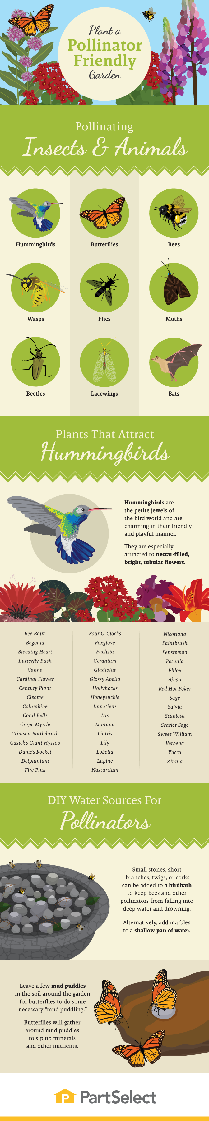Plant a Pollinator-Friendly Garden #infographic
