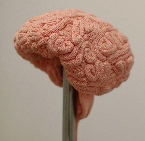 haha brain hat