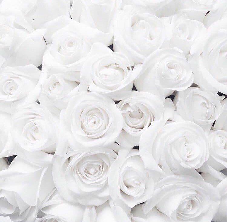 228 Me Gusta 13 Comentarios Kassia Kasshieee En Instagram W Tej Chwili Jest 6 470 818 6 Black And White Aesthetic White Aesthetic Aesthetic Colors