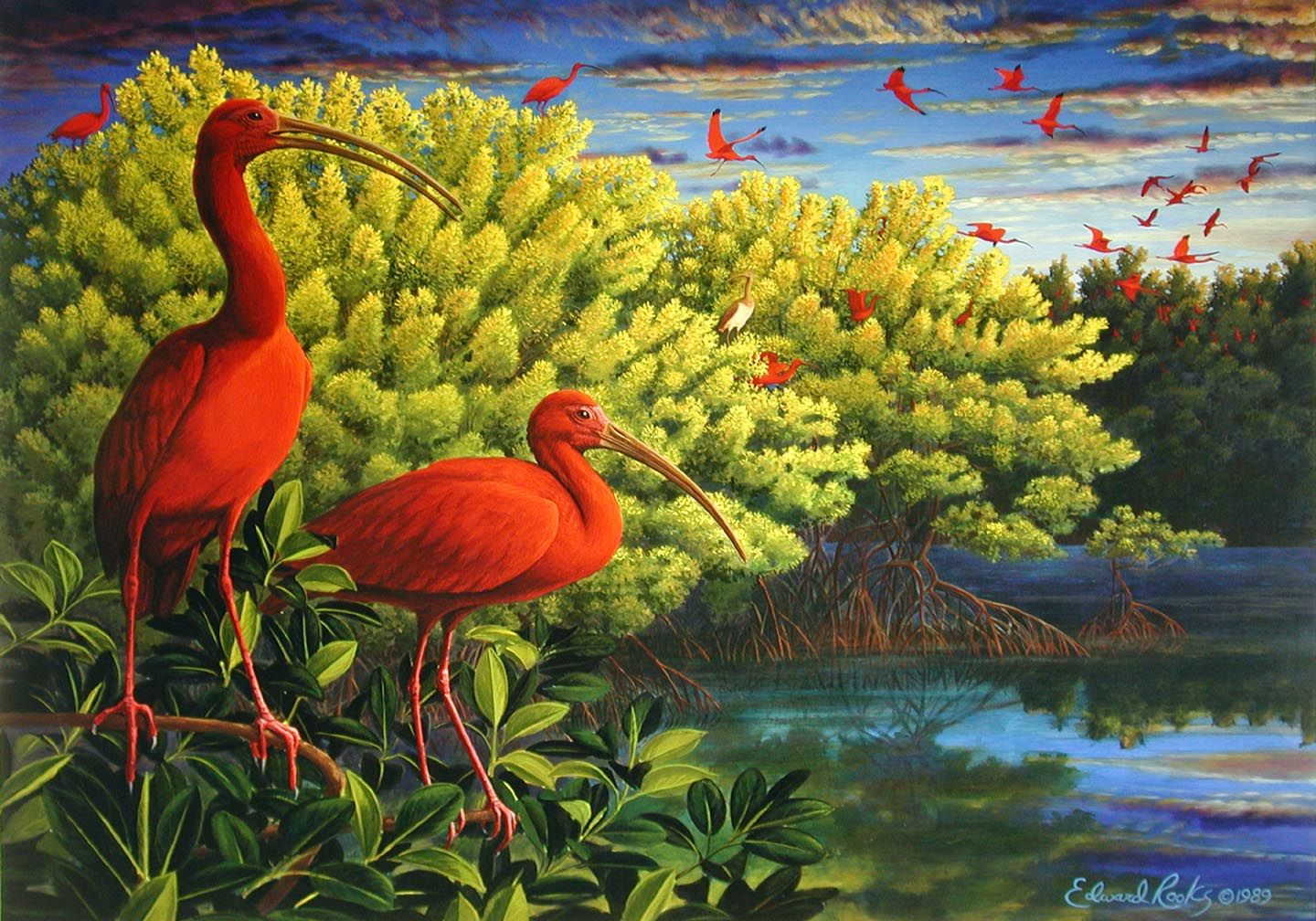 The Scarlet Ibis? By James Hurst???