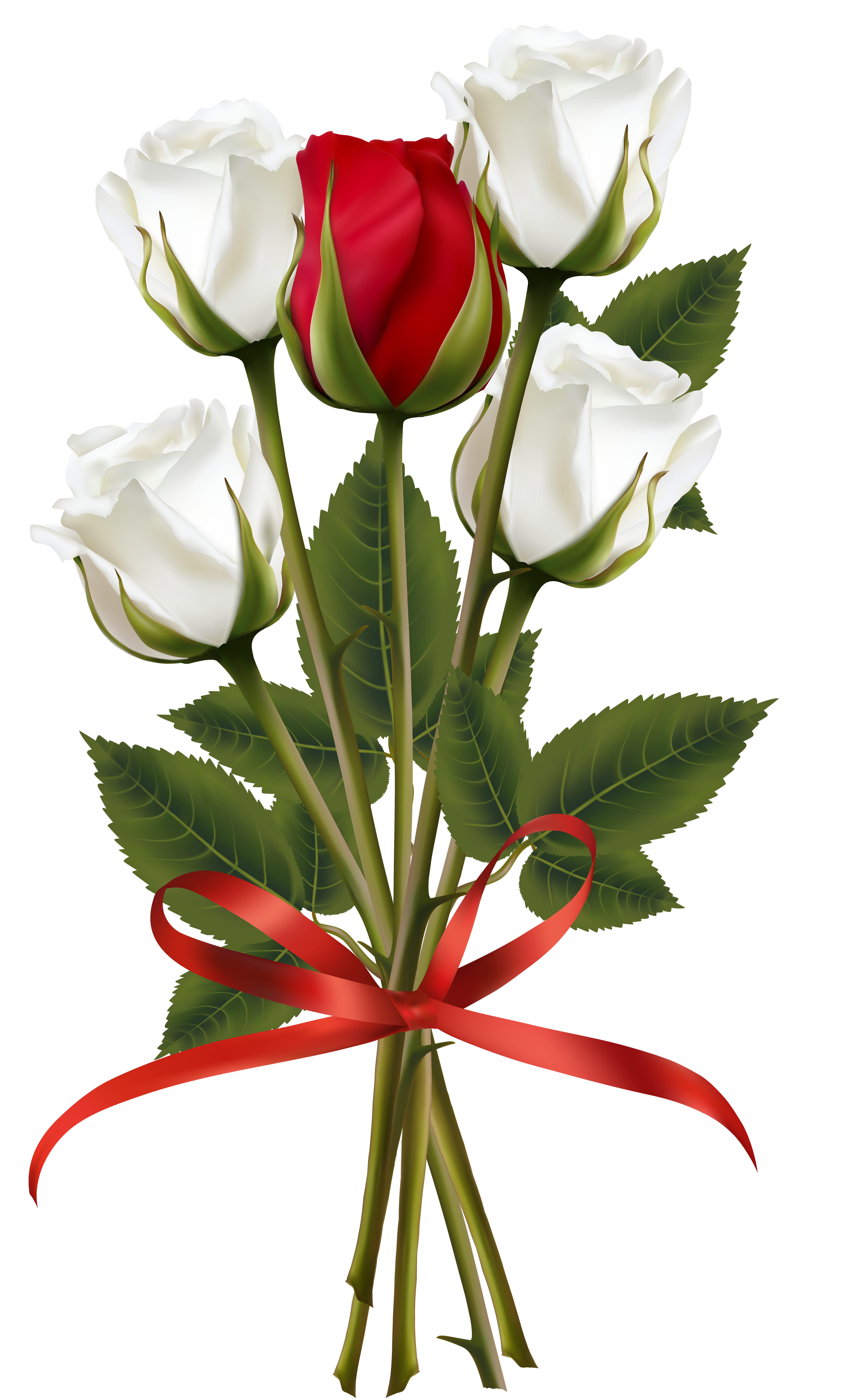 Pin By Tirath Das On Rosas Rose Flower Wallpaper Red Rose Bouquet Red And White Roses