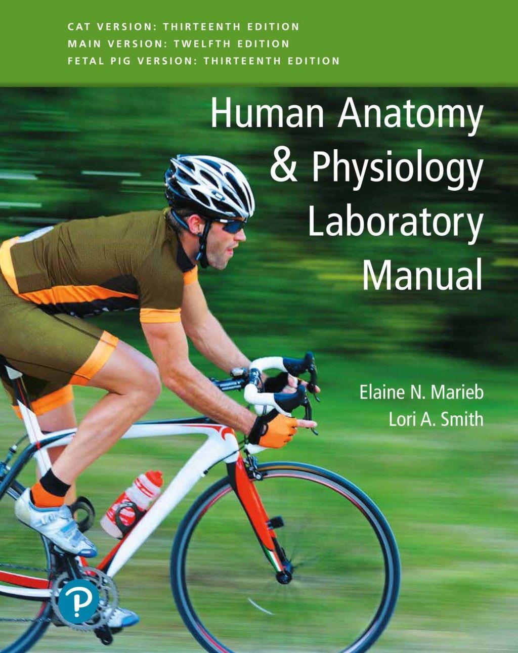 Human Anatomy Amp Physiology Laboratory Manual Fetal Pig