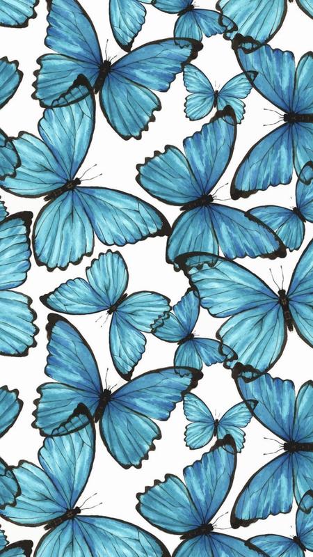Aesthetic Blue Butterfly Wallpaper Vsco