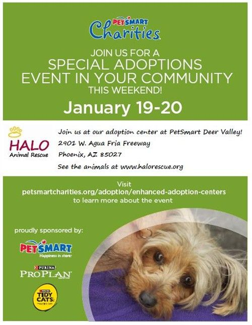 National adoption weekend at PetSmart on 1/19 and 1/20