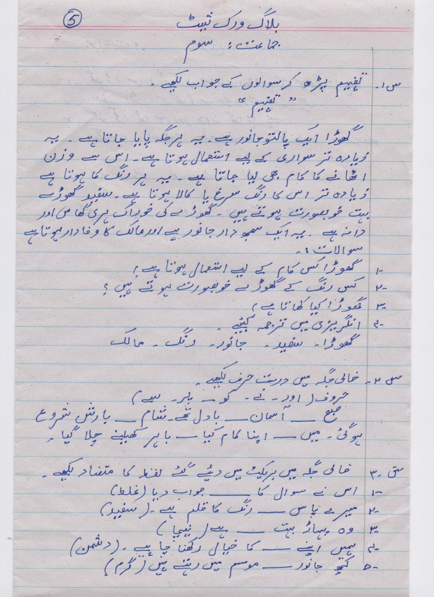 Urdu Blog Worksheet Class 3 5 In
