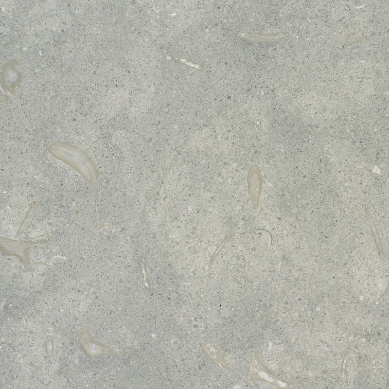 Seagrass Limestone Quarried In Turkey It Is A Sedimentary Stone Formed On Shallow Sea Beds From Monsoonal Ra Limestone Slab Sea Grass Limestone Countertops