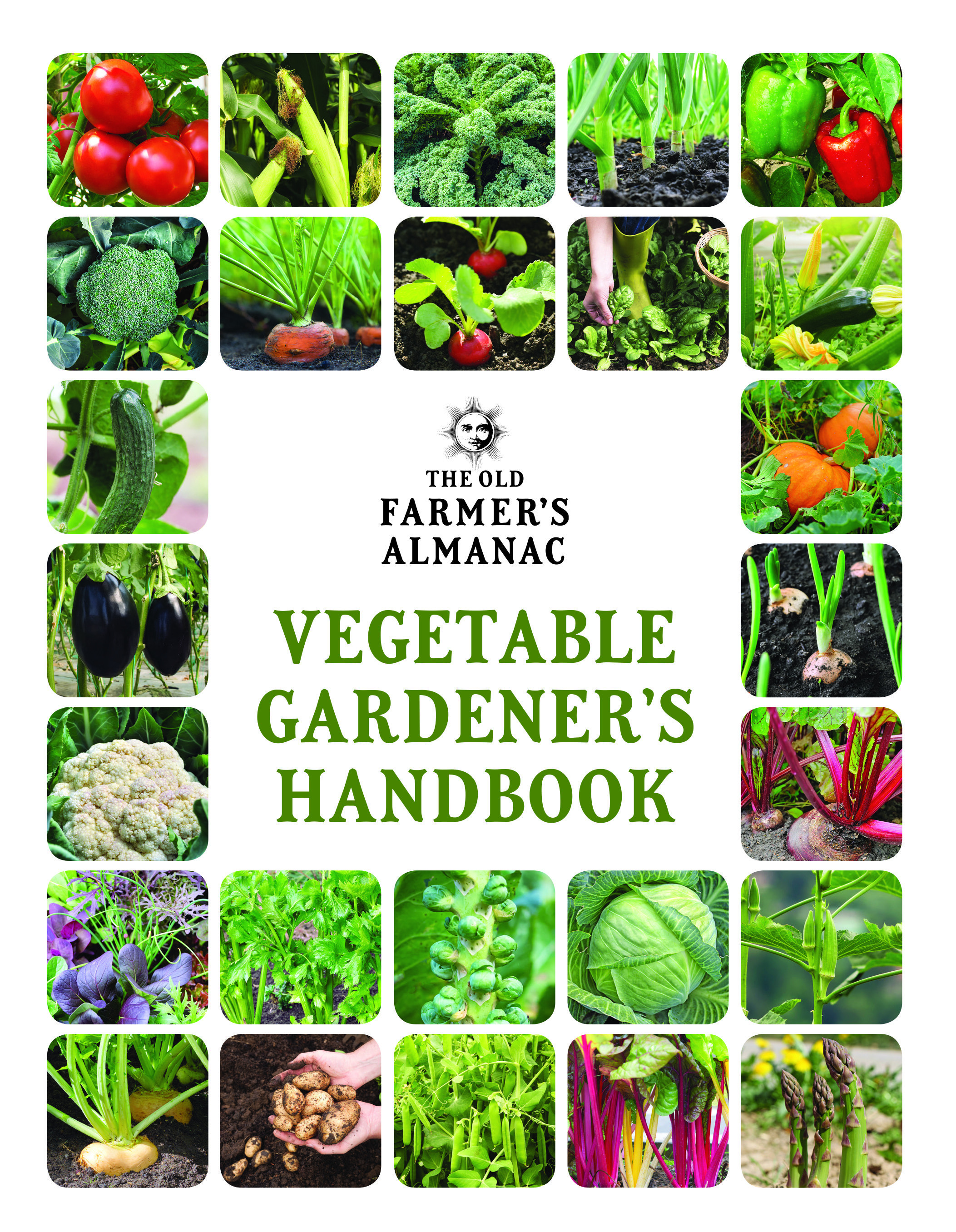 This Book Is The Perfect Companion For Every Vegetable Gardener