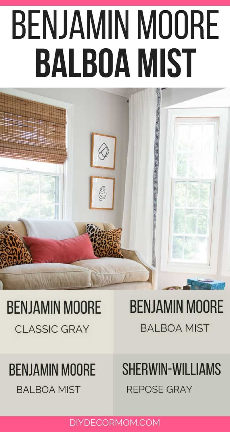 Benjamin Moore Balboa Mist Looking For A Neutral Light Gray
