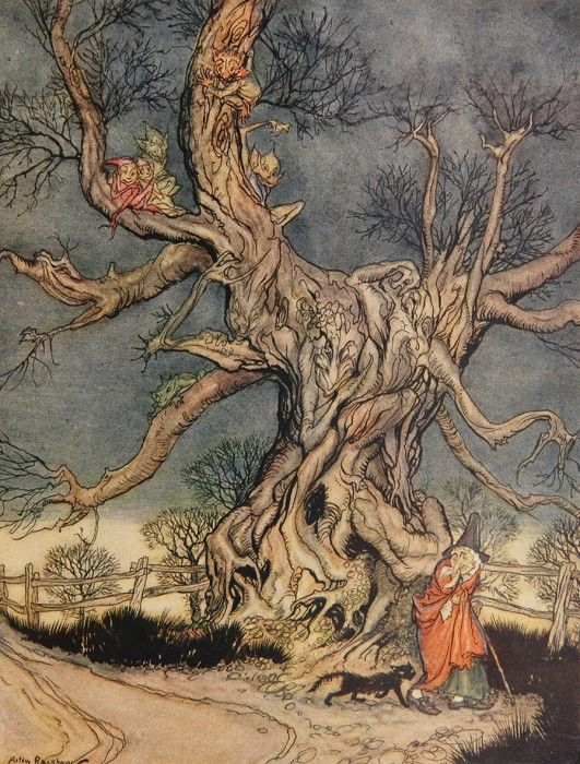 The Legend Of Sleepy Hollow Illustrated By Arthur Rackham Arthur
