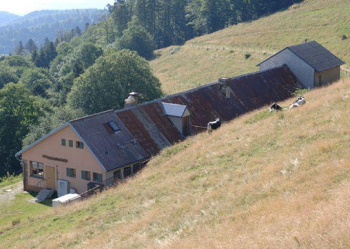 Ferme auberge du Thanner Hubel - Bitschwiller-lès-Thann, Haut-Rhin en 2020   Ferme auberge ...