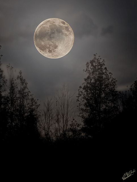 The moon was a ghostly galleon tossed upon cloudy seas