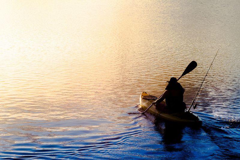 Todos os tamanhos | Rumo ao Sol/towards the sun | Flickr – Compartilhamento de fotos!