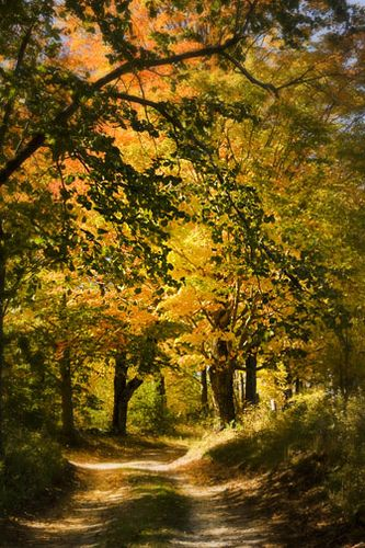 Vermont country road; photo by .Betty Wiley                                                                                                                                                                                 More