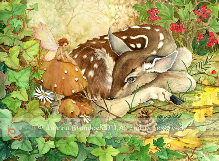 Resting Fawn by JoannaBromley on DeviantArt