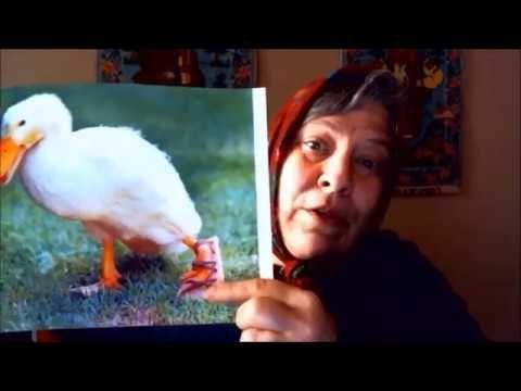 May You Be Kicked By A Duck! Nai Tebe Kachka Kopne! Ancient