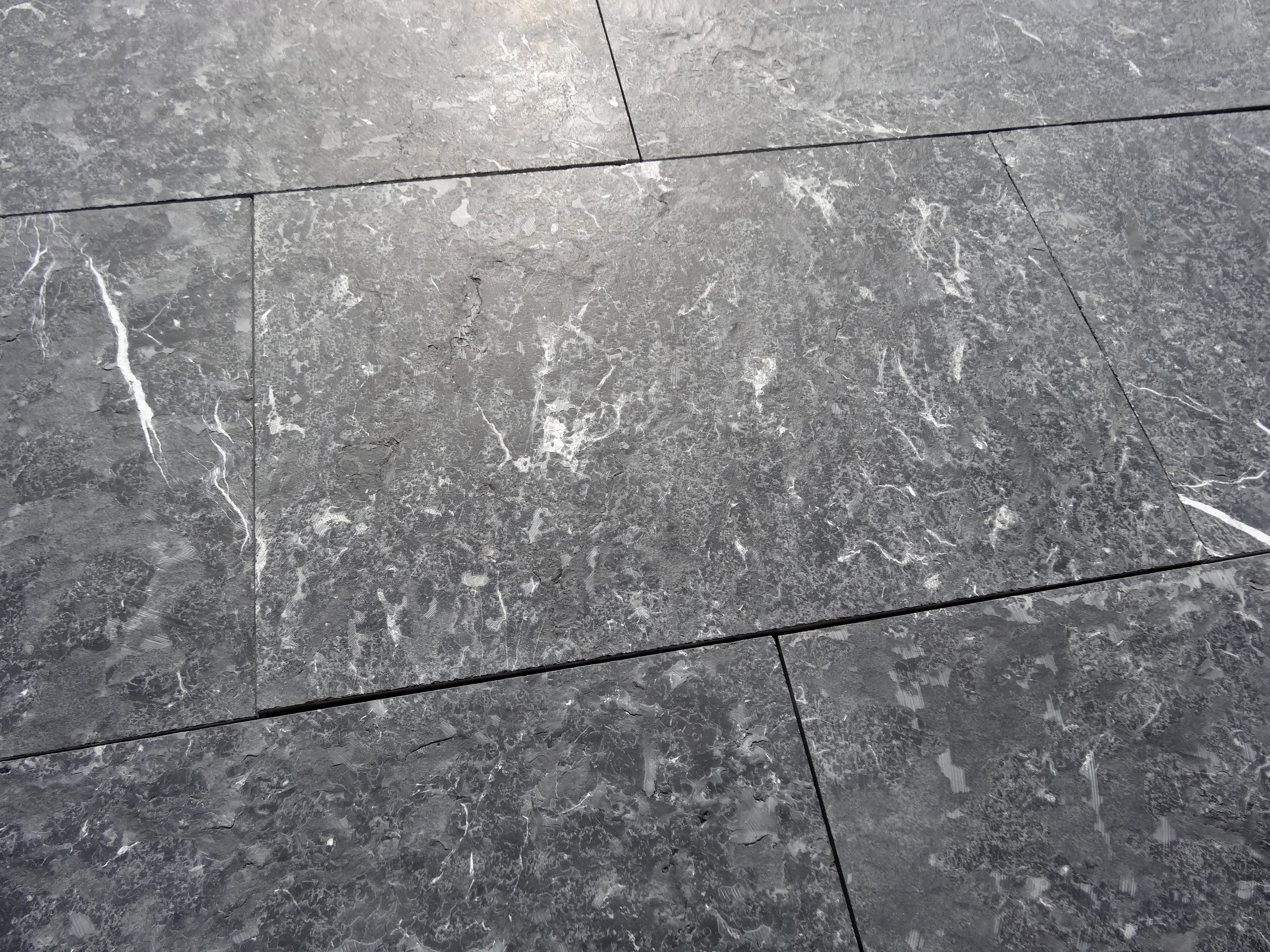Ein Naturstein Mit Faszinierenden Mustern Blaustein