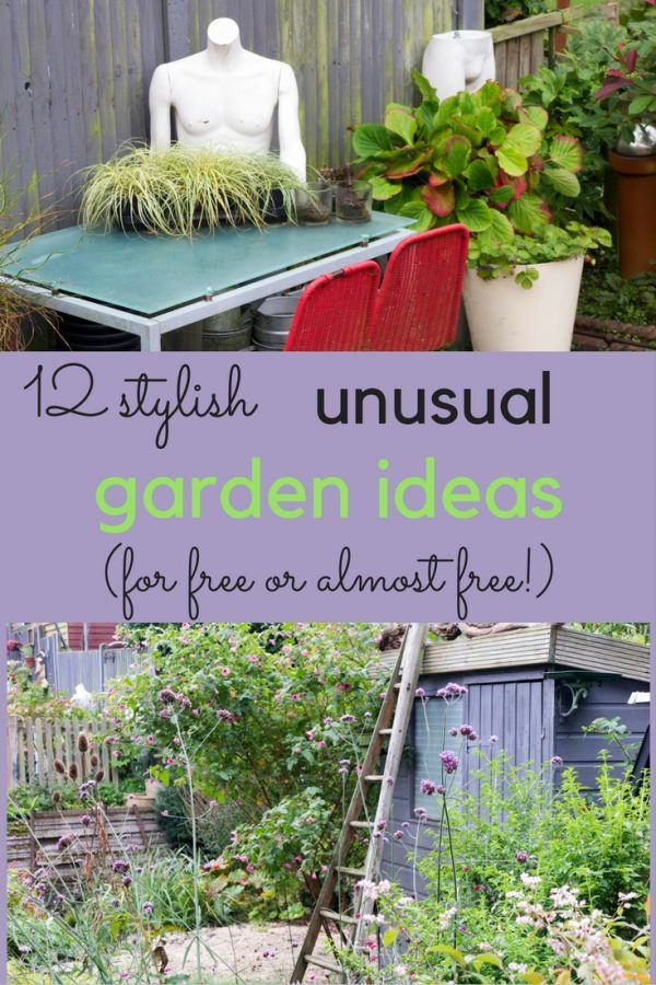 How to save lots of money and create an unusual garden | ✻ DIY ...