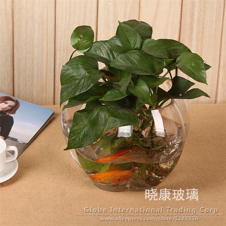 Macetas para plantas acuaticas buscar con google for Adornos con plantas en macetas