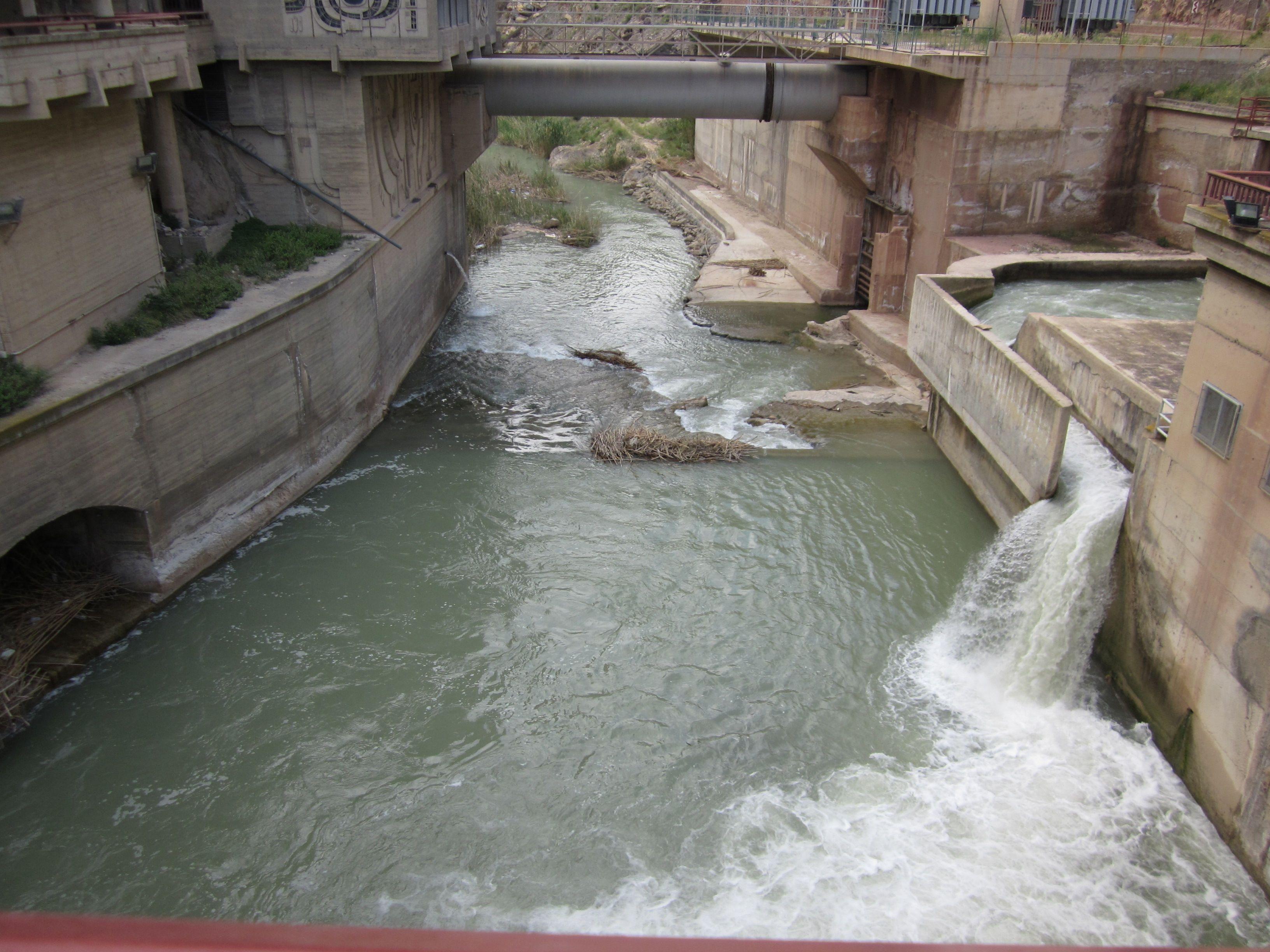 Río Segura a su paso por Ojós