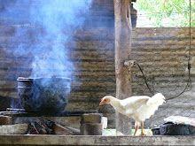 #Libro de #Cocina #Venezolana Las Recetas Olvidadas