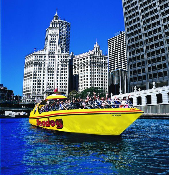 Pin By D On My Town Chicago Pinterest Chicago Chicago River And