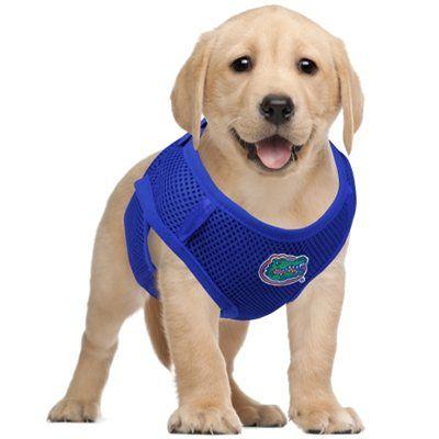 Florida Gators Pet Vest Harness - Royal Blue | Gator football ...