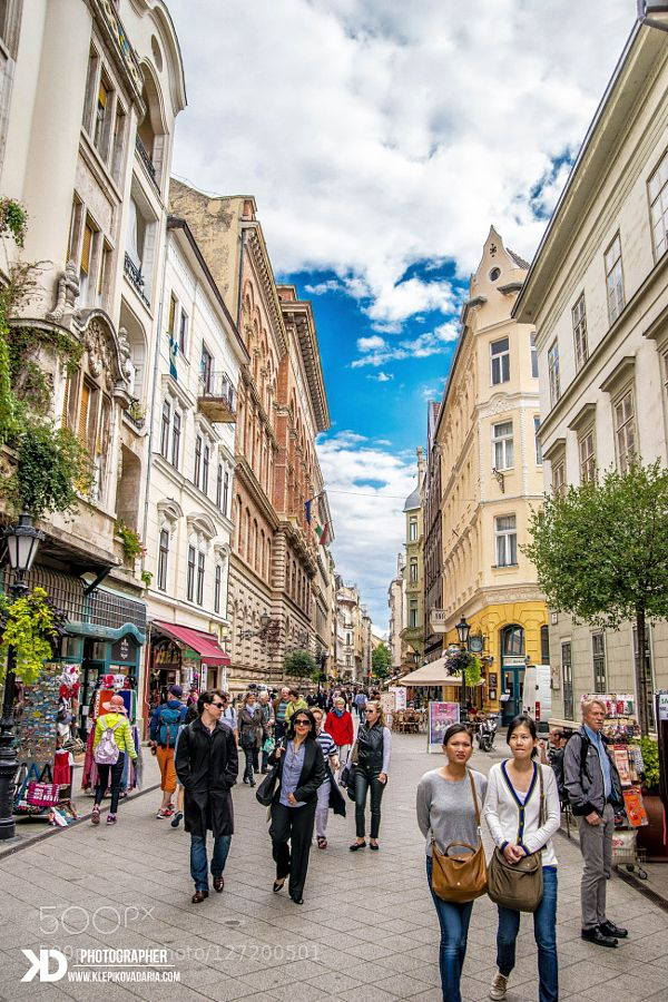 "#Central HungaryStreetarchitecturebluebudapestbuildingcitycityscapecloudseuropehungarylightskystreettravelurban #DariaKlepikova (October 31 2015 at 11:42PM) Váci utca (Váci street) is one of the main pedestrian thoroughfares and perhaps the most famous street of central Budapest Hungary. It features a large number of restaurants and shops catering primarily to the tourist market. The Lonely Planet says ""It's tourist central but the line of cafés and shops are worth seeing  at least once"