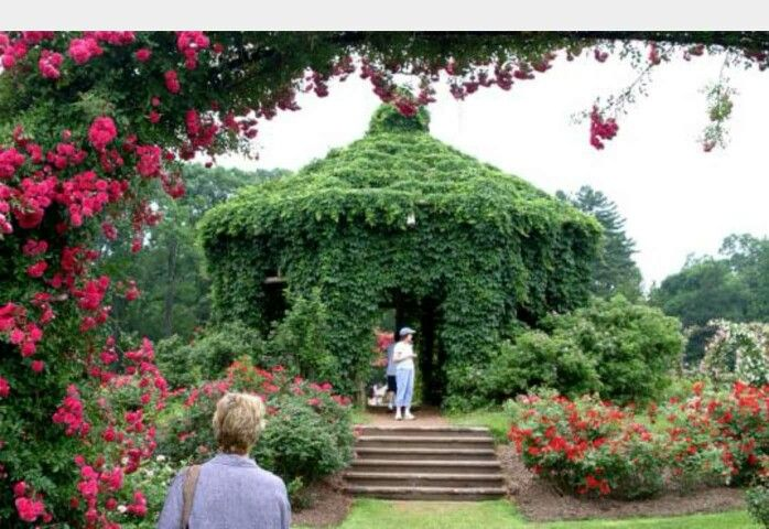 Ivy Covered Gazebo Bebe So unique Garden Structures