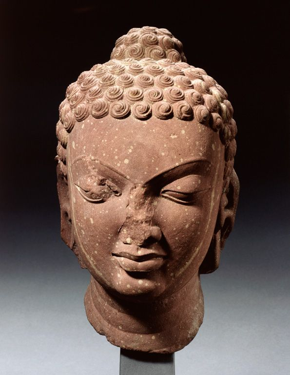 Head of Buddha - India - Gupta period, 5th century ...