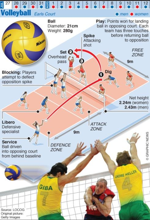 Volleyball 2012 Olympics Volleyball Olympics 2012 Image New Straits Times Coaching Volleyball Olympic Volleyball Volleyball Workouts